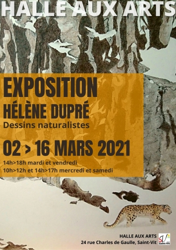 Exposition de dessins naturalistes